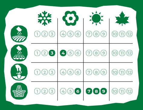Calendario de Siembra Eurogarden Aromáticas Lavanda