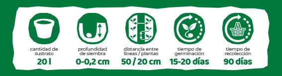 Iconos Plantación Eurogarden Aromáticas Manzanilla