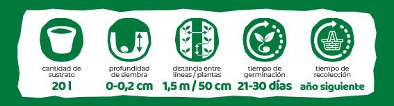 Iconos Plantación Eurogarden Aromáticas Romero Común