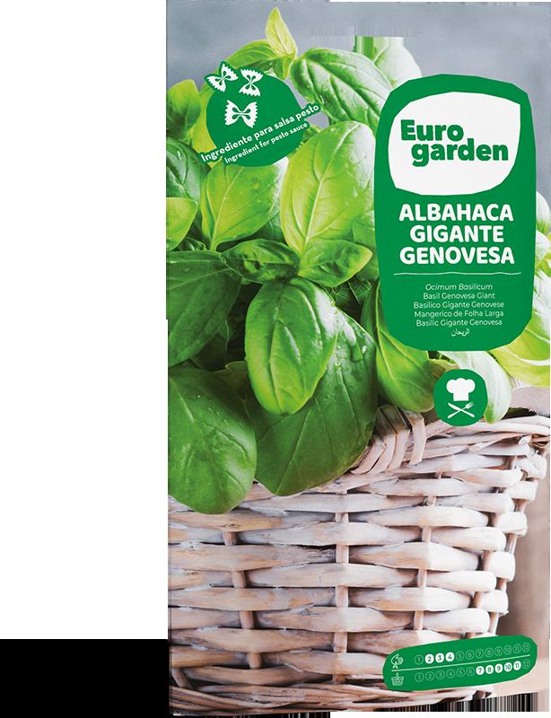 Mockup Sobre Eurogarden Aromáticas Albahaca Gigante Genovesa