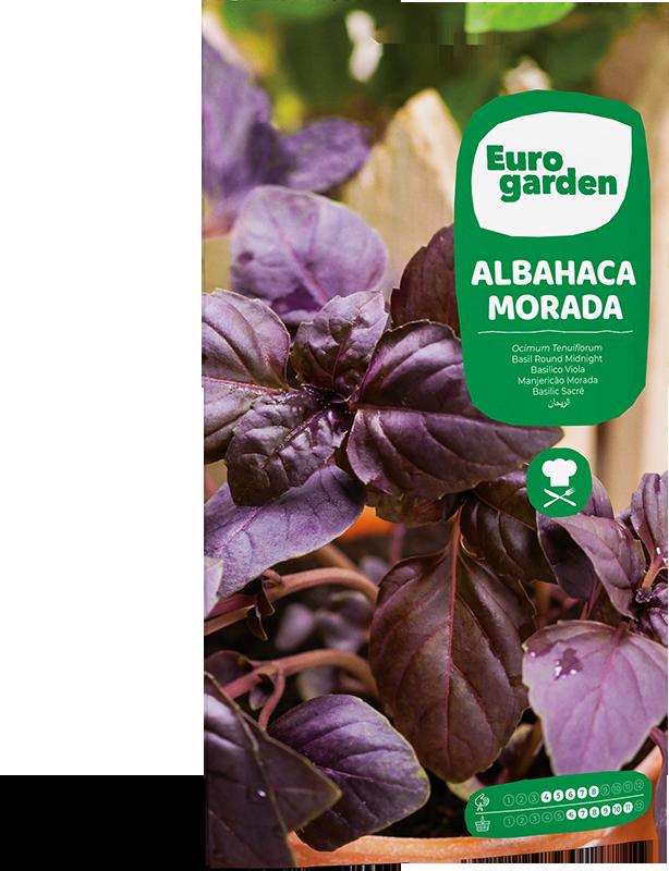 Mockup Sobre Eurogarden Aromáticas Albahaca Morada