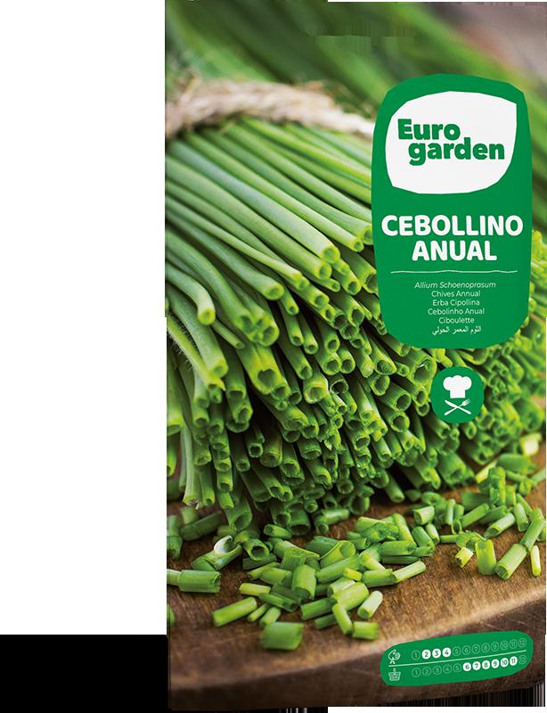 Mockup Sobre Eurogarden Aromáticas Cebollino Anual