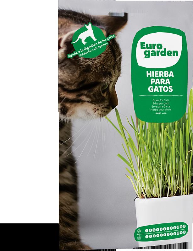 Mockup Sobre Eurogarden Aromáticas Hierba Para Gatos