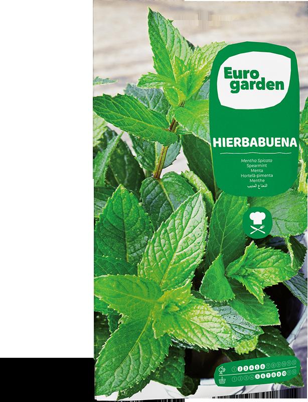 Mockup Sobre Eurogarden Aromáticas Hierbabuena