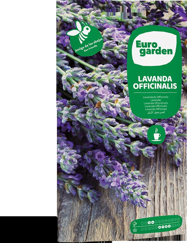 Mockup Sobre Eurogarden Aromáticas Lavanda Officinalis