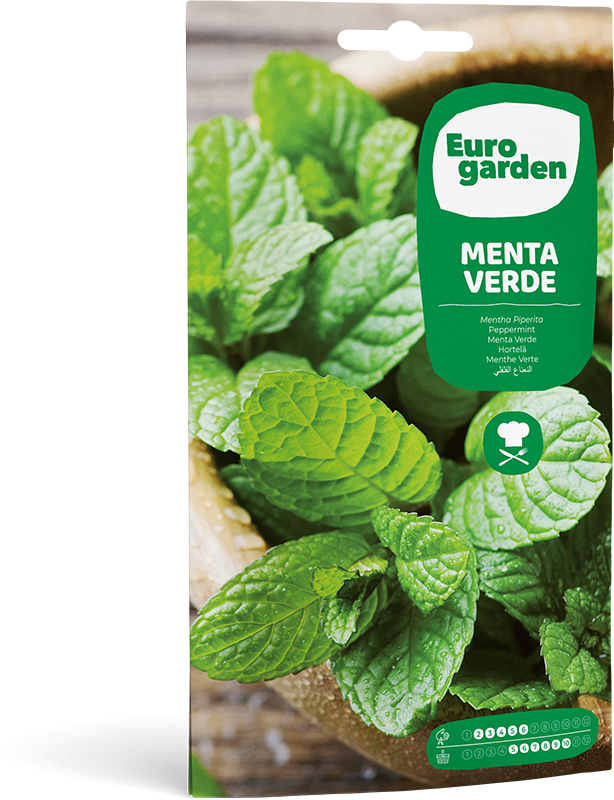 Mockup Sobre Eurogarden Aromáticas Menta Verde