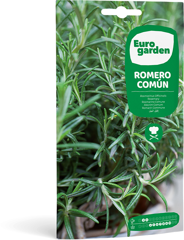 Mockup Sobre Eurogarden Aromáticas Romero Común