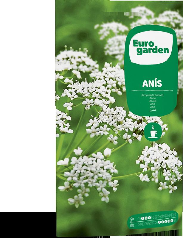 Mockup Sobre Individual Eurogarden Aromáticas Anís