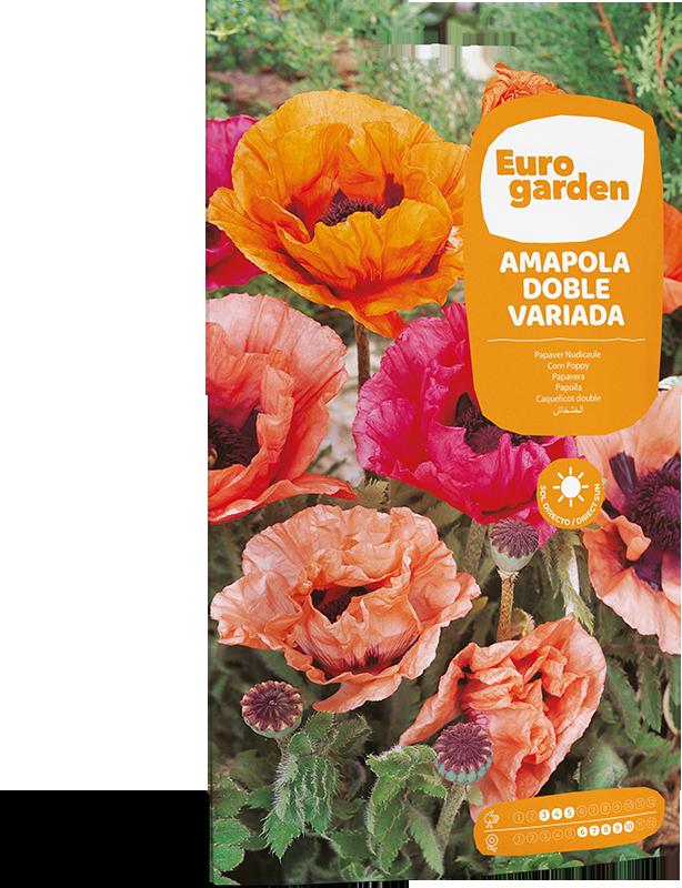 Mockup Sobre Individual Eurogarden Flores Amapola Doble Variada