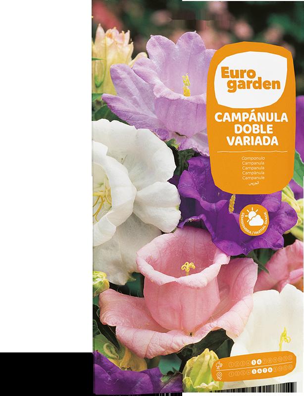 Mockup Sobre Individual Eurogarden Flores Campánula Doble Variada