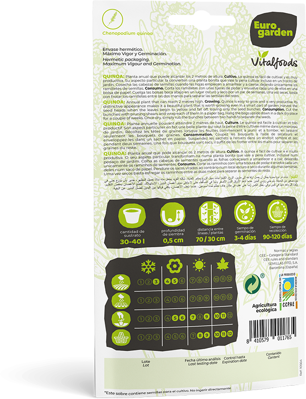 Mockup Quinoa Sobre Vitalfoods Quinoa