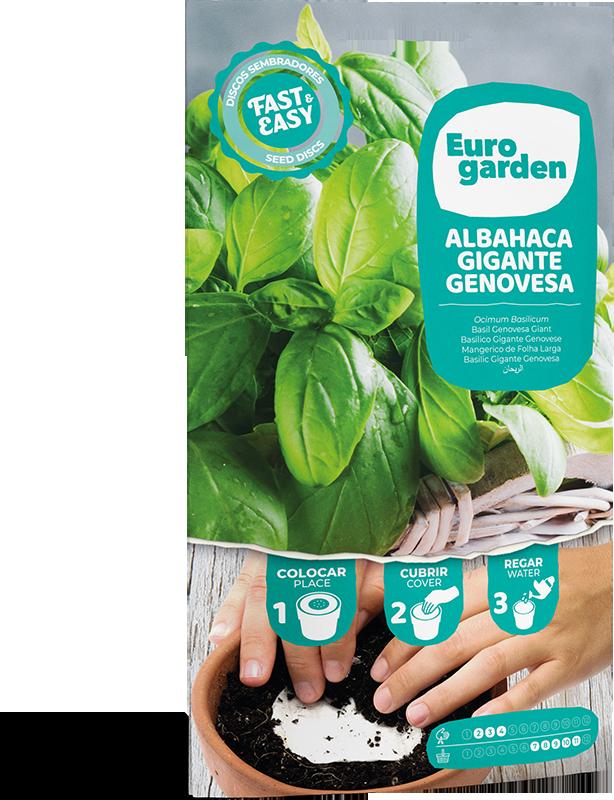 Mockup Sobre Individual Eurogarden Cintas y Discos Albahaca Gigante Genovesa