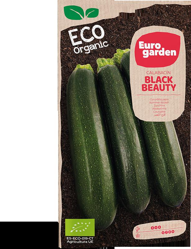 Mockup Sobre Individual Eurogarden ECO Calabacín Black Beauty