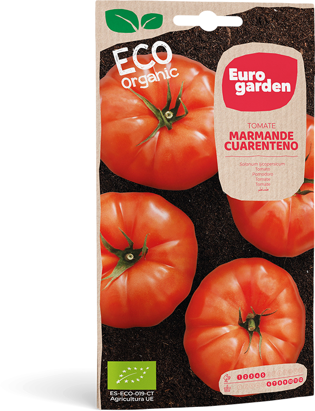 Mockup Sobre Individual Eurogarden ECO Tomate Marmande Cuarenteno
