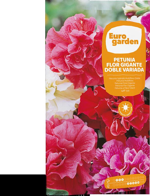 Mockup Sobre Individual Eurogarden Flores Petunia Flor Gigante Doble Variada