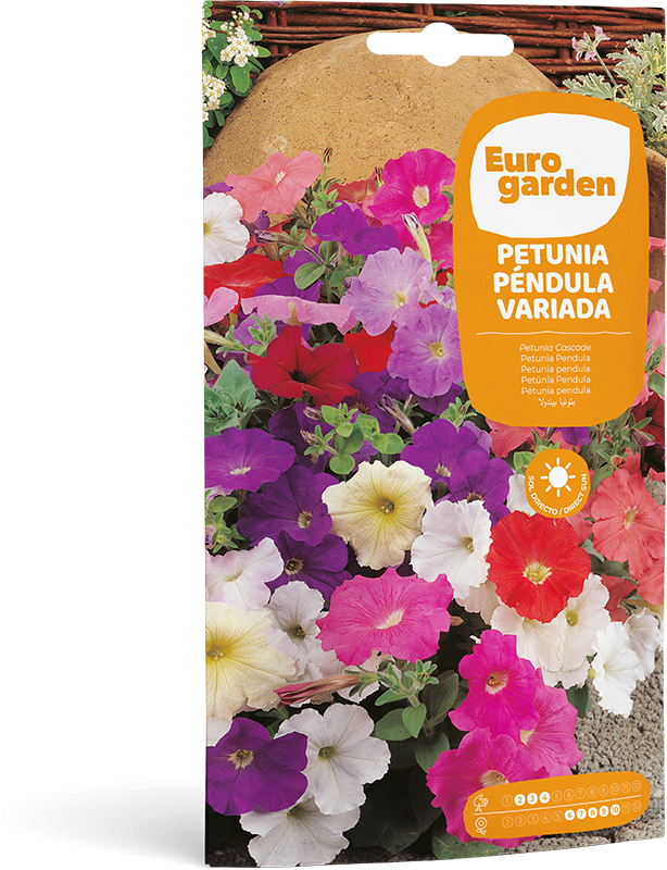 Mockup Sobre Individual Eurogarden Flores Petunia Péndula Variada