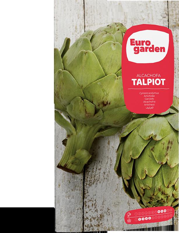 Mockup Sobre Individual Eurogarden Hortícolas Alcachofa Talpiot