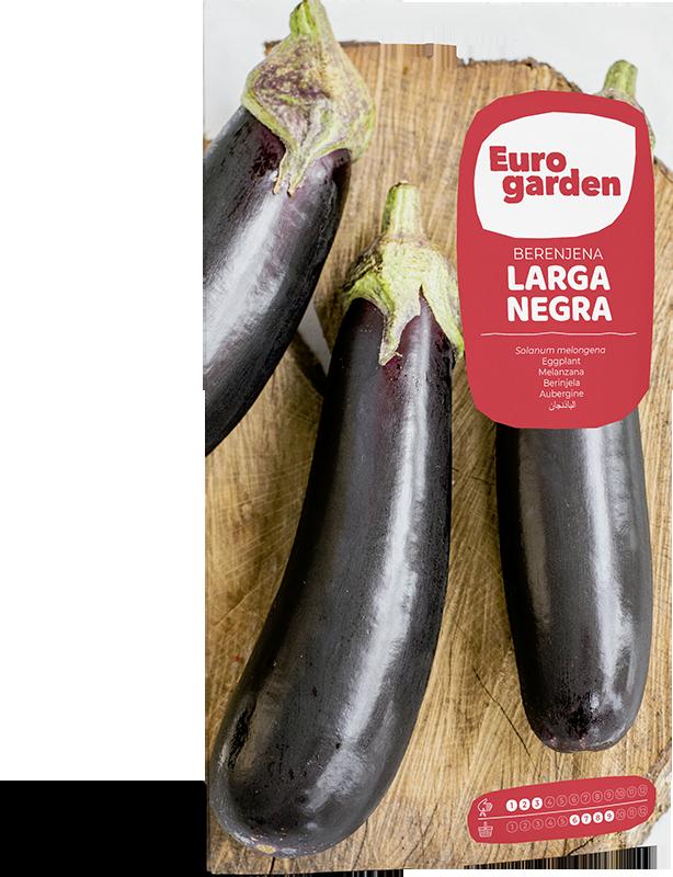 Mockup Sobre Individual Eurogarden Hortícolas Berenjena Larga Negra
