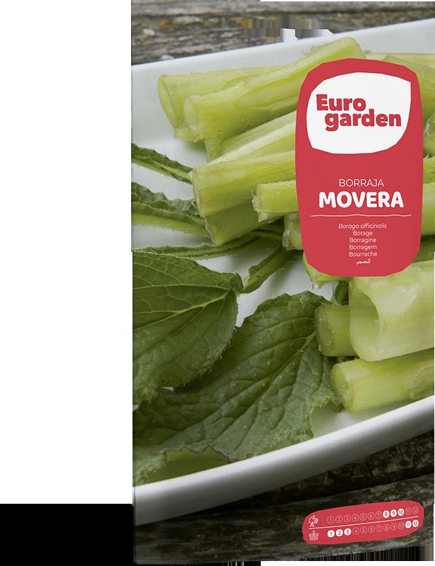 Mockup Sobre Individual Eurogarden Hortícolas Borraja Movera