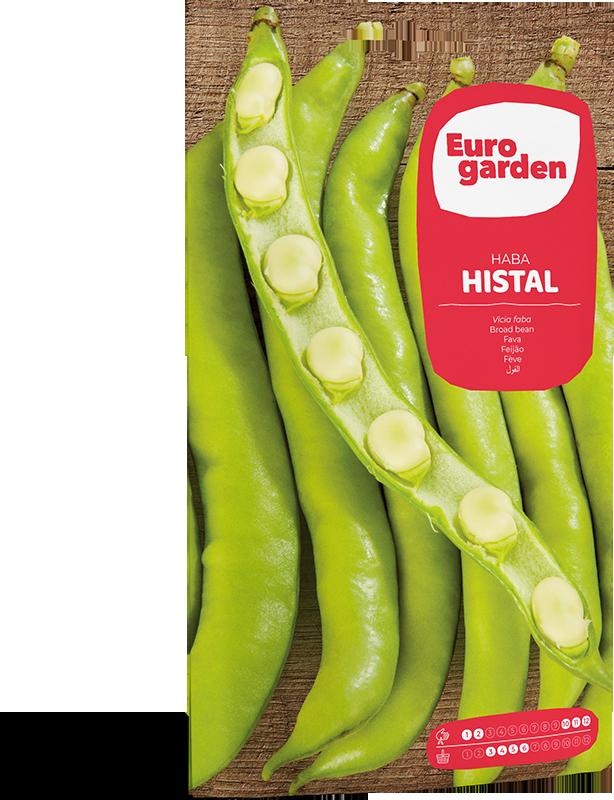 Mockup Sobre Individual Eurogarden Hortícolas Haba Histal