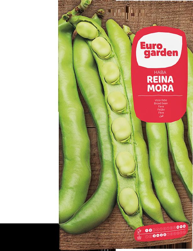 Mockup Sobre Individual Eurogarden Hortícolas Haba Reina Mora