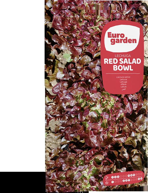 Mockup Sobre Individual Eurogarden Hortícolas Lechuga Red Salad Bowl