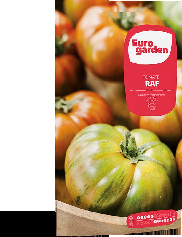Mockup Sobre Individual Eurogarden Hortícolas Tomate Raf