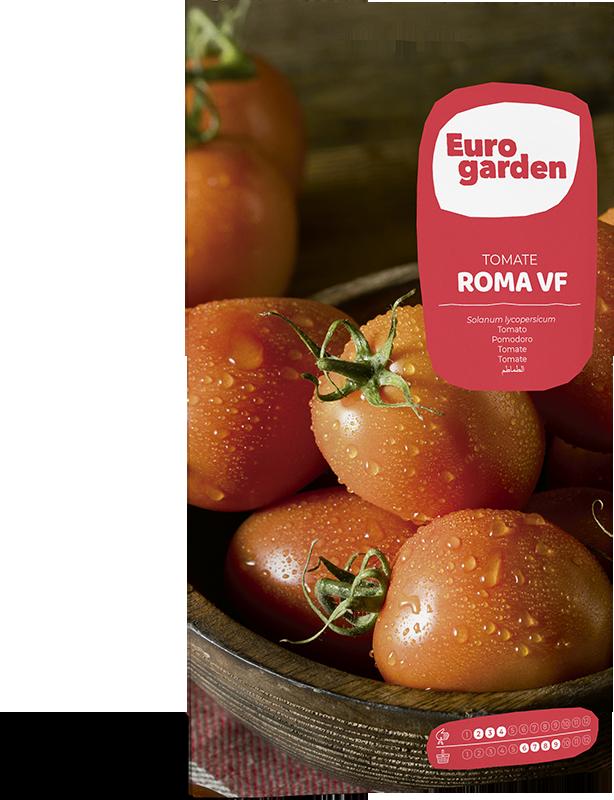 Mockup Sobre Individual Eurogarden Hortícolas Tomate Roma VF