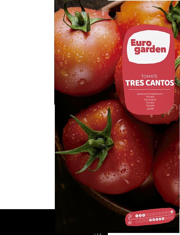 Mockup Sobre Individual Eurogarden Hortícolas Tomate Tres Cantos