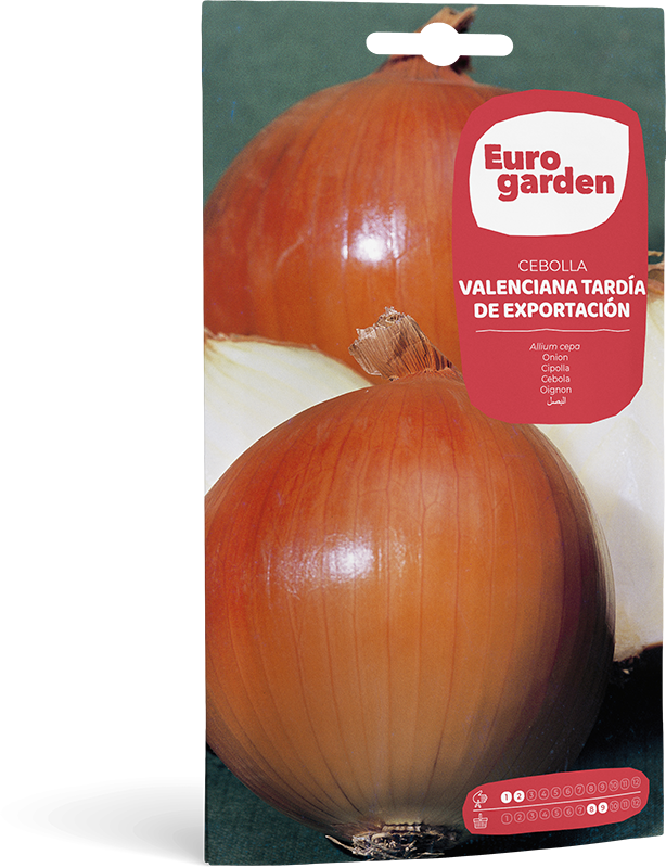 Mockup Sobre Individual Eurogarden Hortícolas Cebolla Valenciana Tardía de Exportación